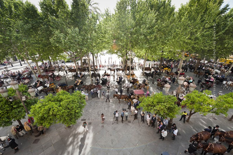 Sevilla Capital Mundial del Enganche 1
